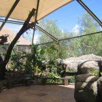 Inside zoo enclosure using ClearMesh