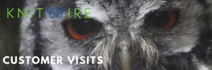 Close up image of owl