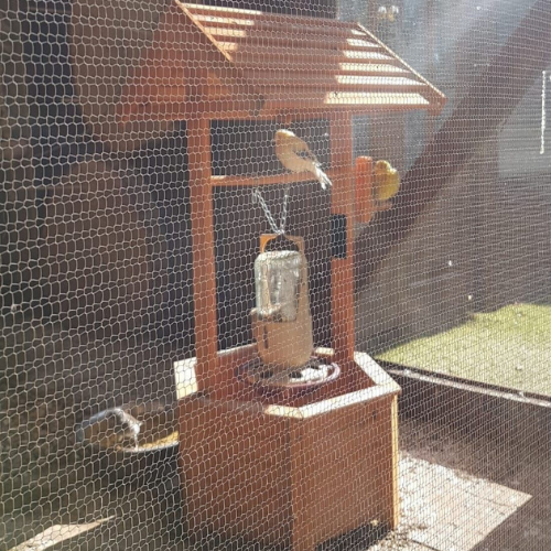 wooden well with birds perched