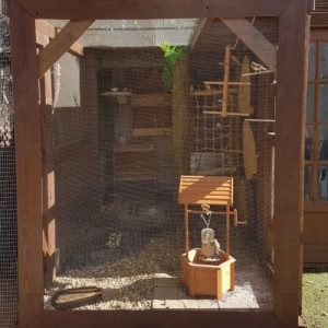 outdoor square shaped aviary