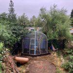 Zoo mesh used in UK backyard aviary