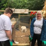 Goat behind ClearMesh barrier at Sensory Park
