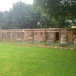 Outdoor cat enclosures using ClearMesh