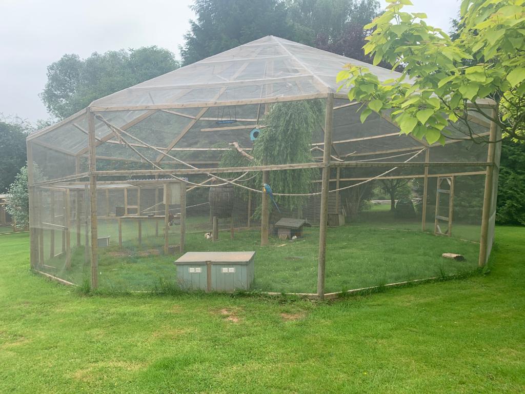 Macaw aviary using ClearMesh aviary mesh